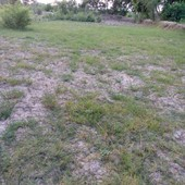 zabardast plot for sale in bannu at main kohat road...